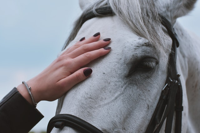 Strong female horse names might draw inspiration from prominent figures in history.