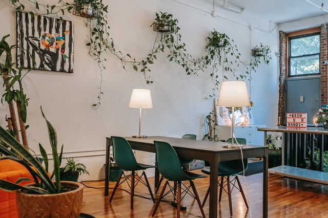 Trailing plants grown indoors add life and color, making your home a soothing and breathable environment.