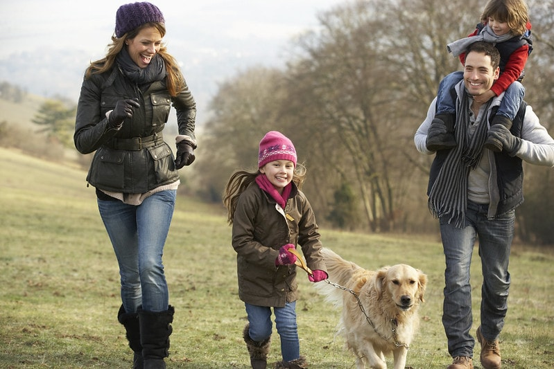 Read on the find out 7 ideas for family Twixmas