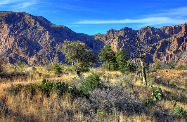 The National and public parks are created and protected for natural conservation.
