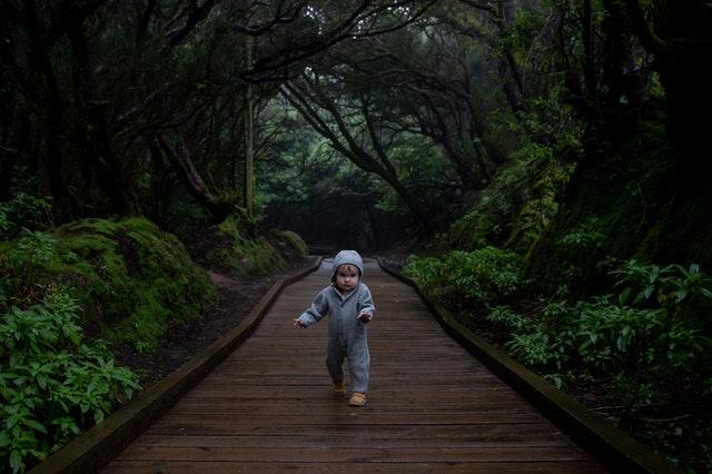 Kids may enjoy jokes about woods.