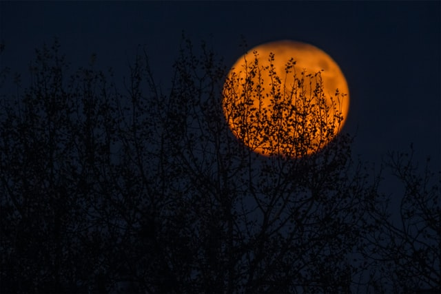 Email a friend with a full moon night riddle.