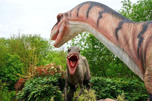 The dinosaur with the longest name is the Micropachycephalosaurus.