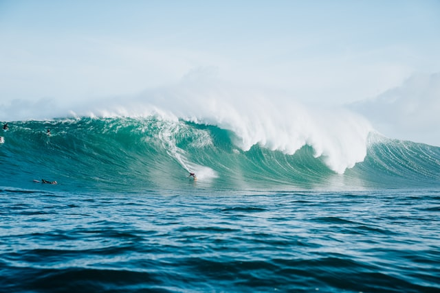 Don't let 'Jaws' put you off surfing, shark attacks are rarer than being hit by lightning.