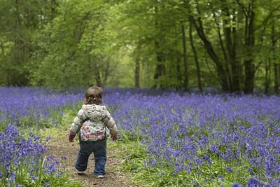 Searching for early signs of spring is a magical way to explore outdoors with children.