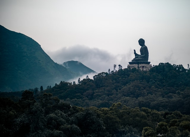 The Buddha's teachings are the ultimate guide to a peaceful life.