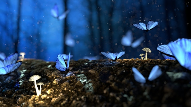 Fairies break and heal just like butterflies.