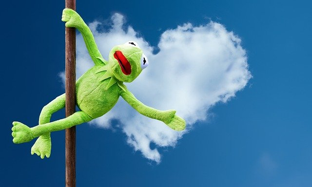 Quotes that muppets will love!