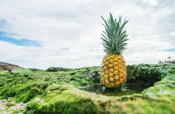 'Psych's friend is the pineapple.