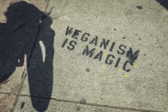 Veganism is the best way to show nature that you care.