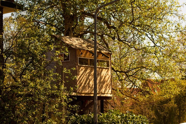 Cabins can be made a permanent home in the forests.