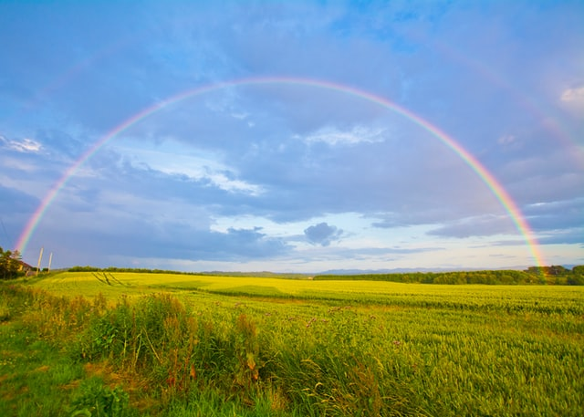 A quote about individuality is equal to a rainbow.