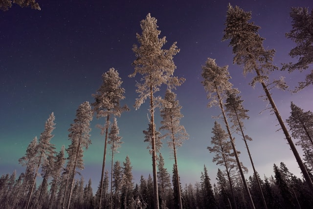 The beautiful fall phenomenon of Aurora Borealis!