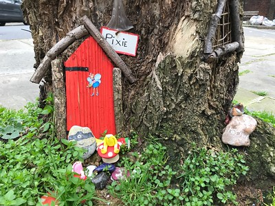 Go on a fairy hunt starting at their front door.