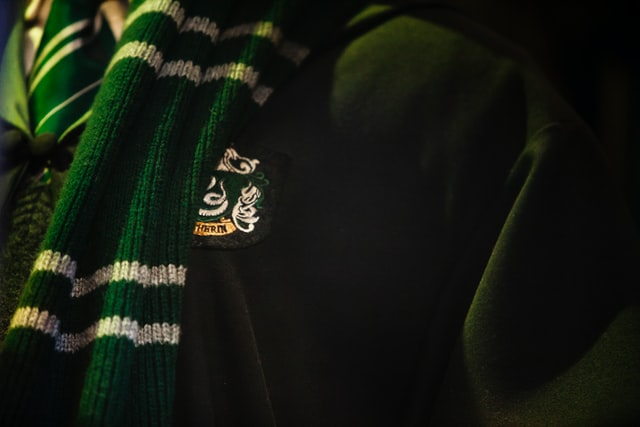 Slytherin quotes are popular among the kids.