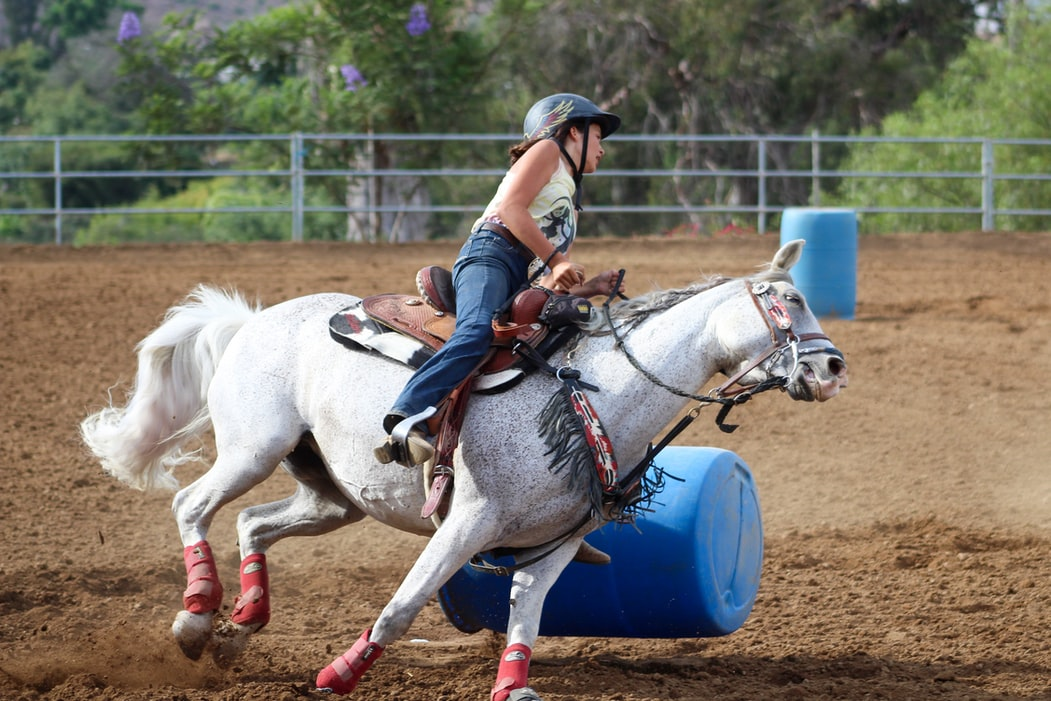 Find barrel racing quotes comparing to other sports here.