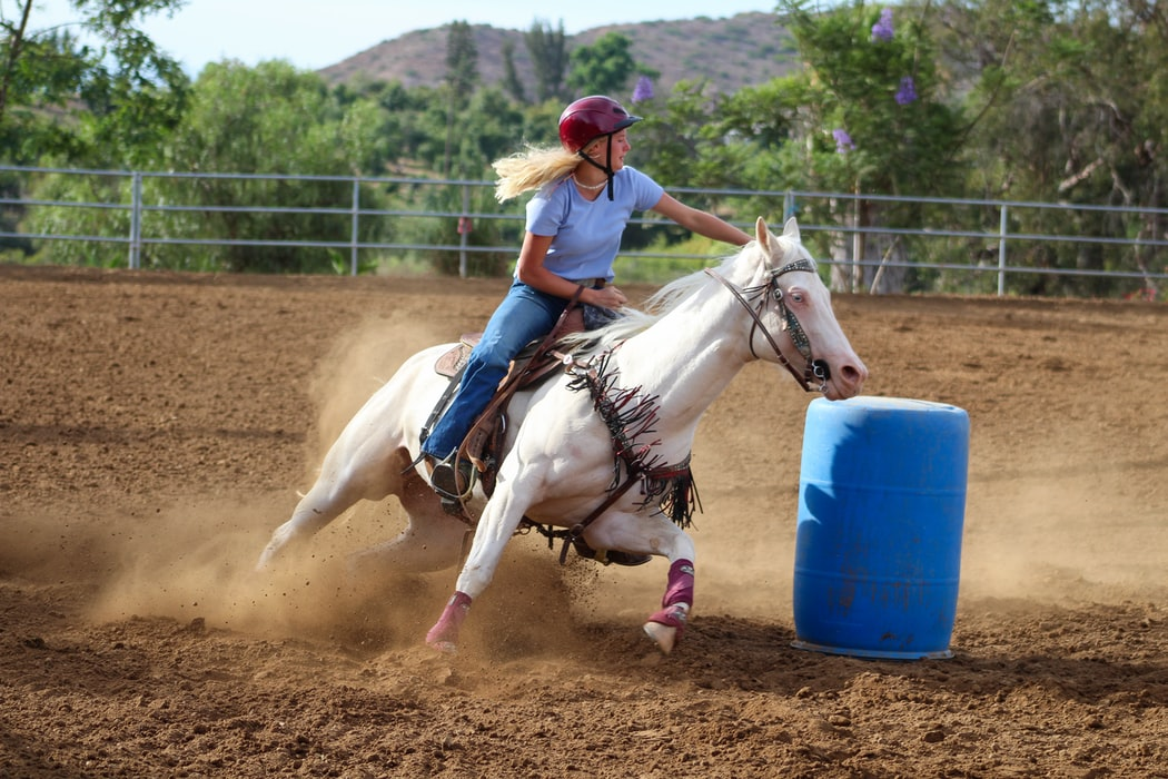 Cool and funny barrel racing quotes are great to read.
