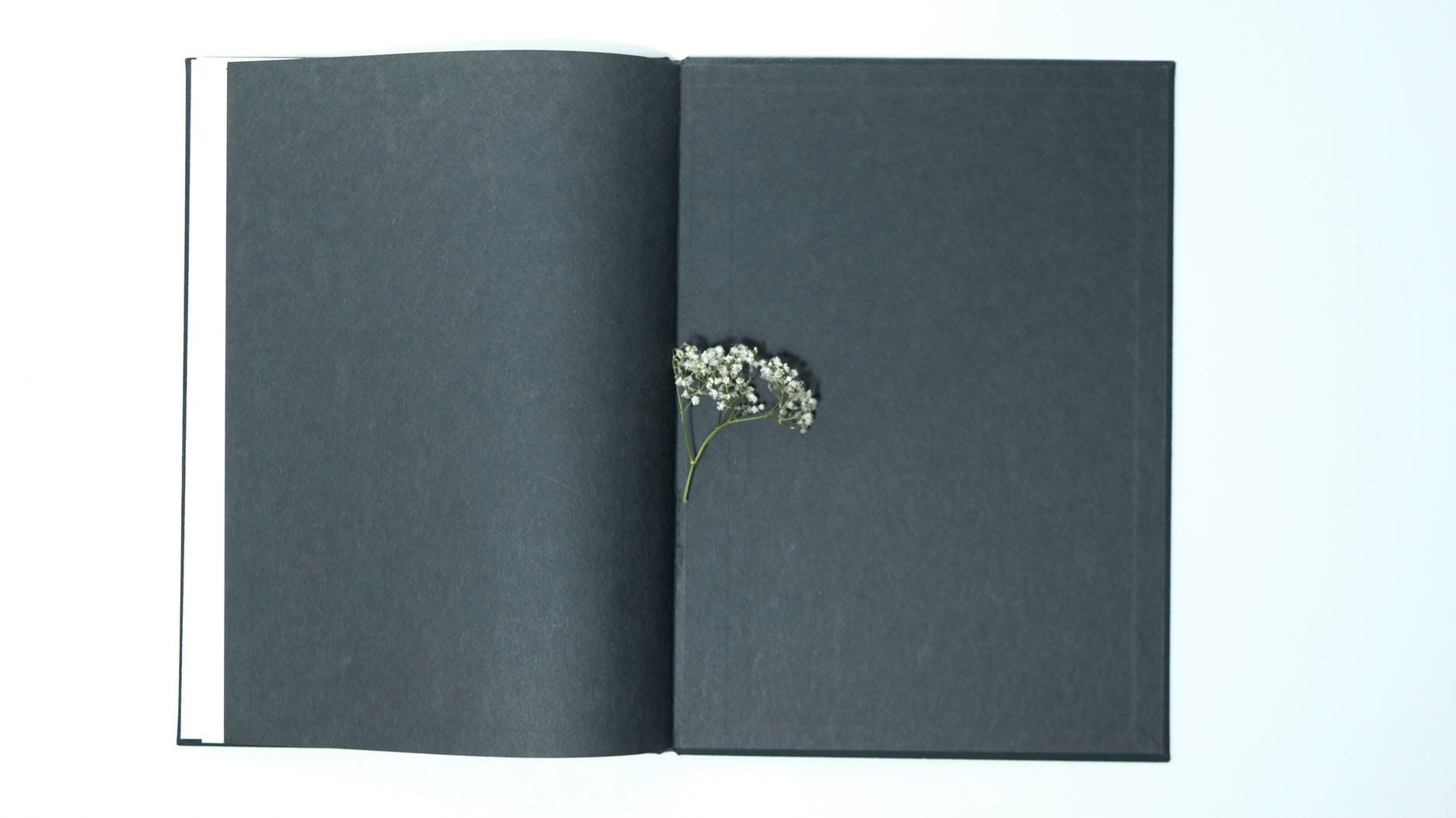 Rousseau's novel 'Julie, ou la nouvelle Héloïse' is a novel that encouraged an era of Romanticism.