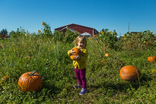Visit a pumpkin patch for an adorable October birthday activity.