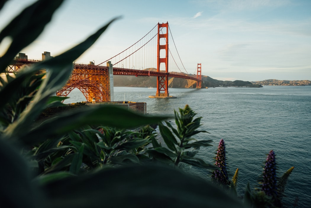 San Francisco quotes will give you the vibe of the city.