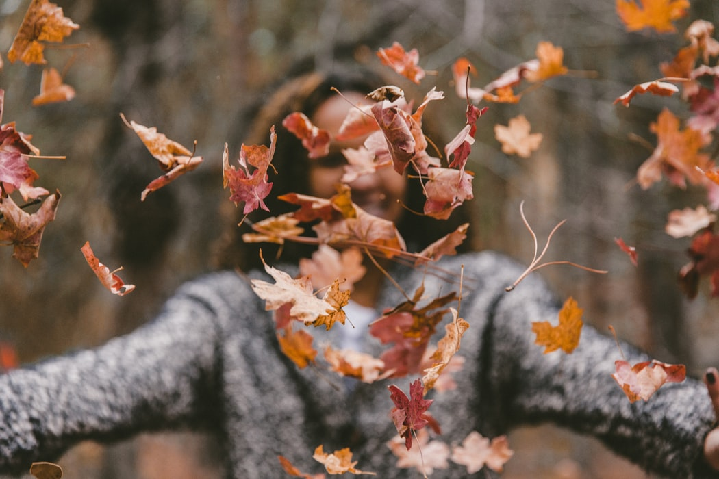 Autumn quotes are all about cherishing the memories.