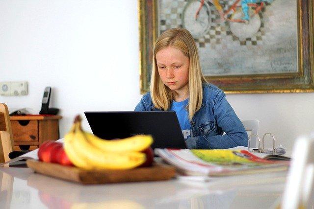 Homeschooling for flexible learning option.