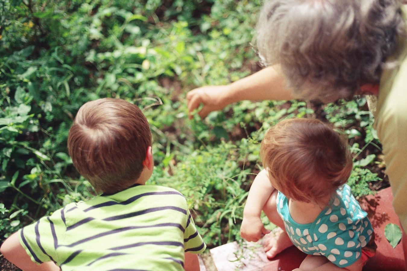 It's a good idea to keep grandparents involved with activities.