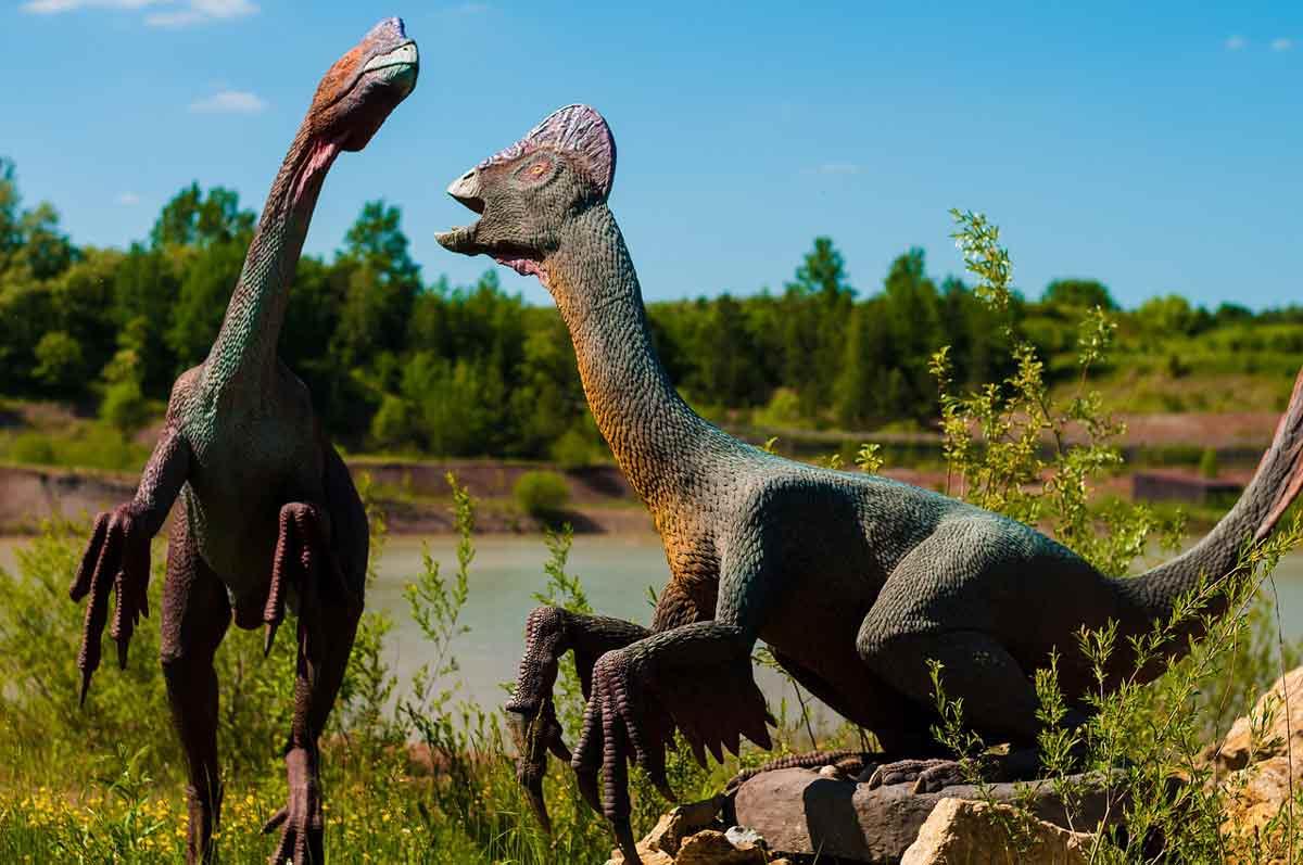 Best lines from the fictional dinosaur film 'Jurassic Park'.