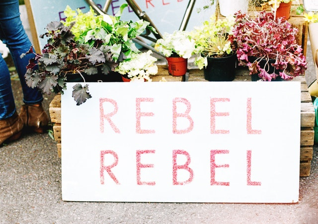 The true nature of the rebel is that they never follow how the world works.