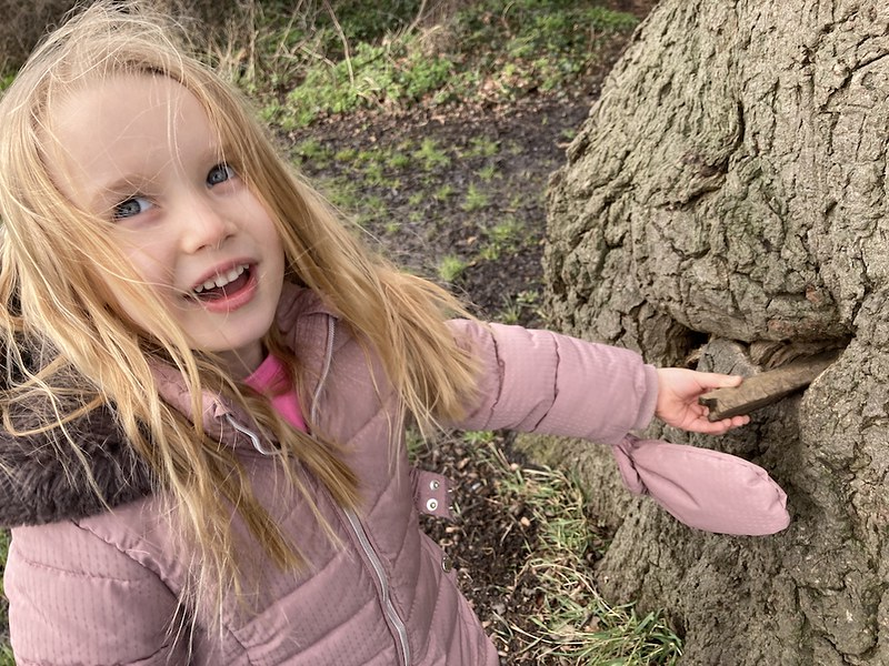 Are there fairies at the bottom of your garden or local park?