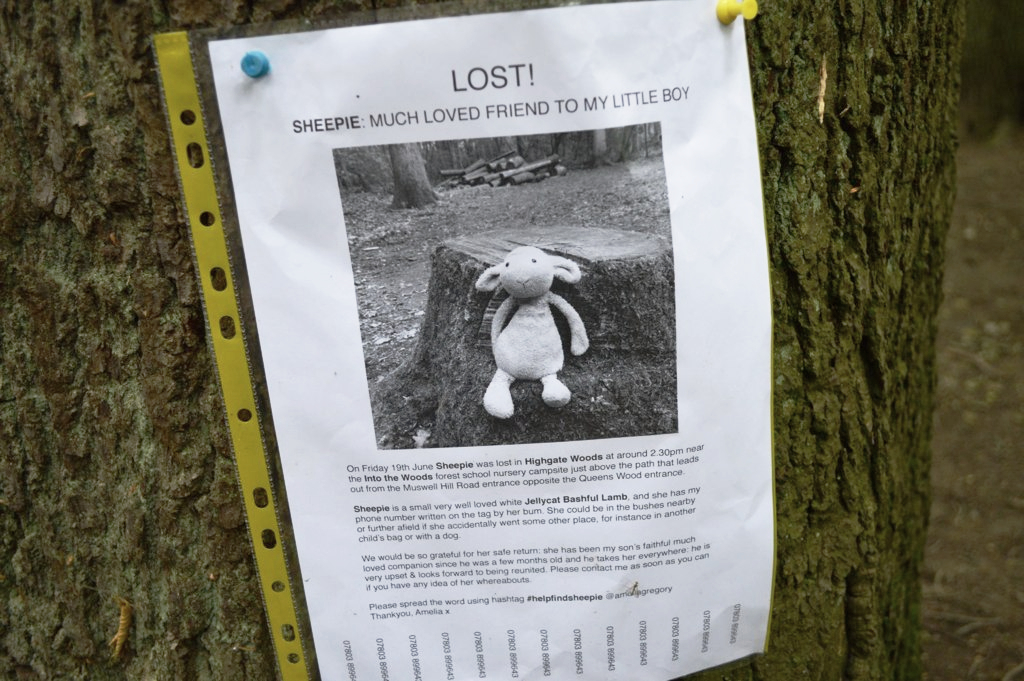 Parents go to great lengths to find their children's missing toys.