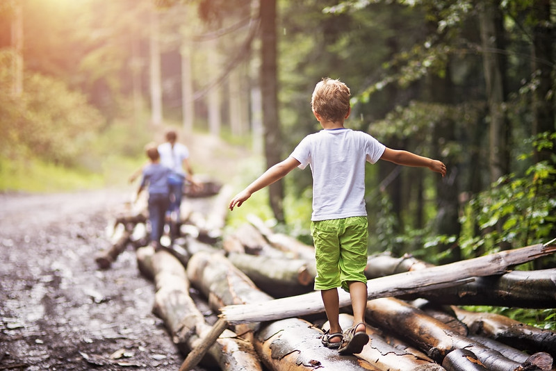 Children climbing on logs in a forest