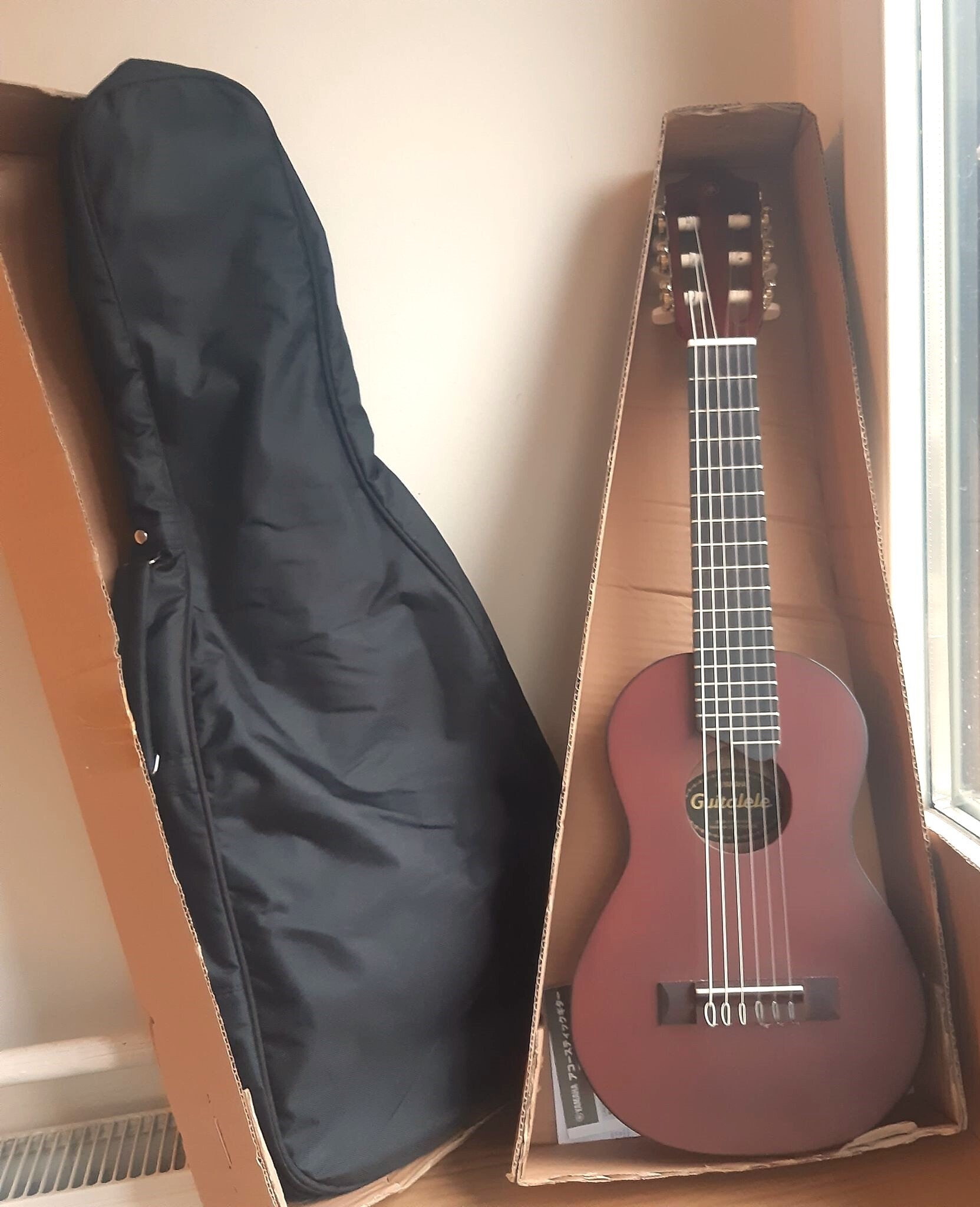 Guitalele housse transportable