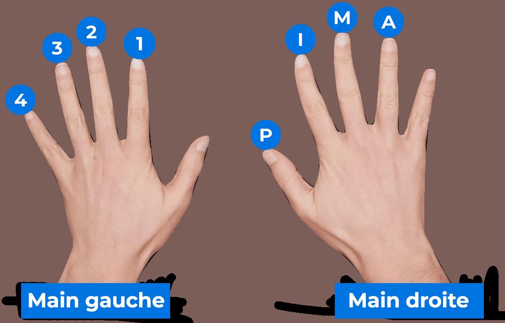 Numérotation des doigts de la main droite et de la main gauche à la guitare