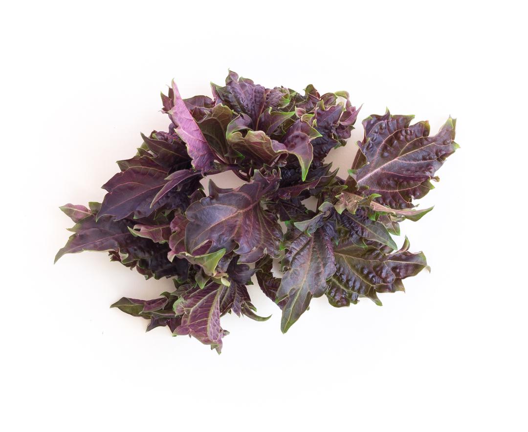 Basil (Purple Ruffles)