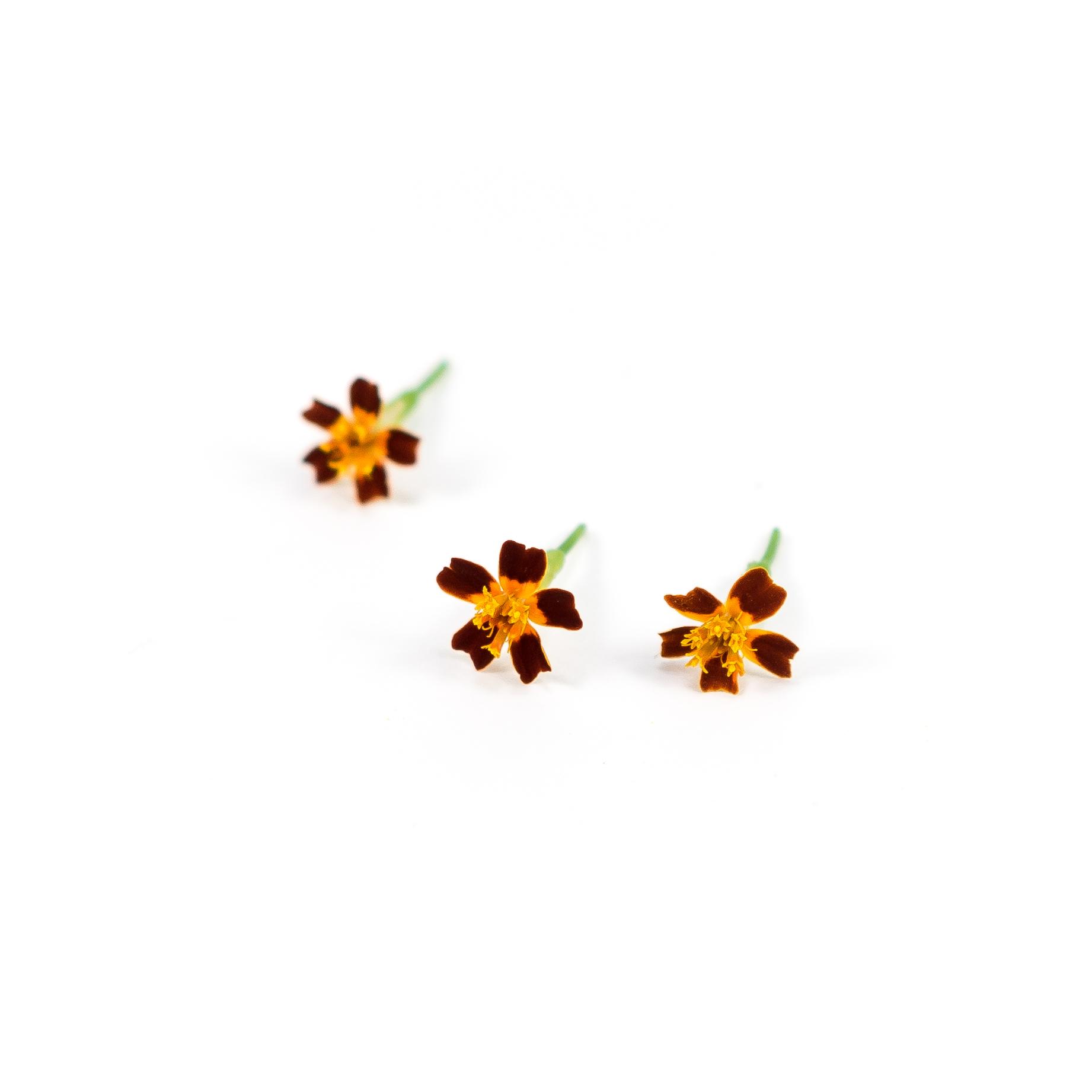 Marigold (Red Gem)