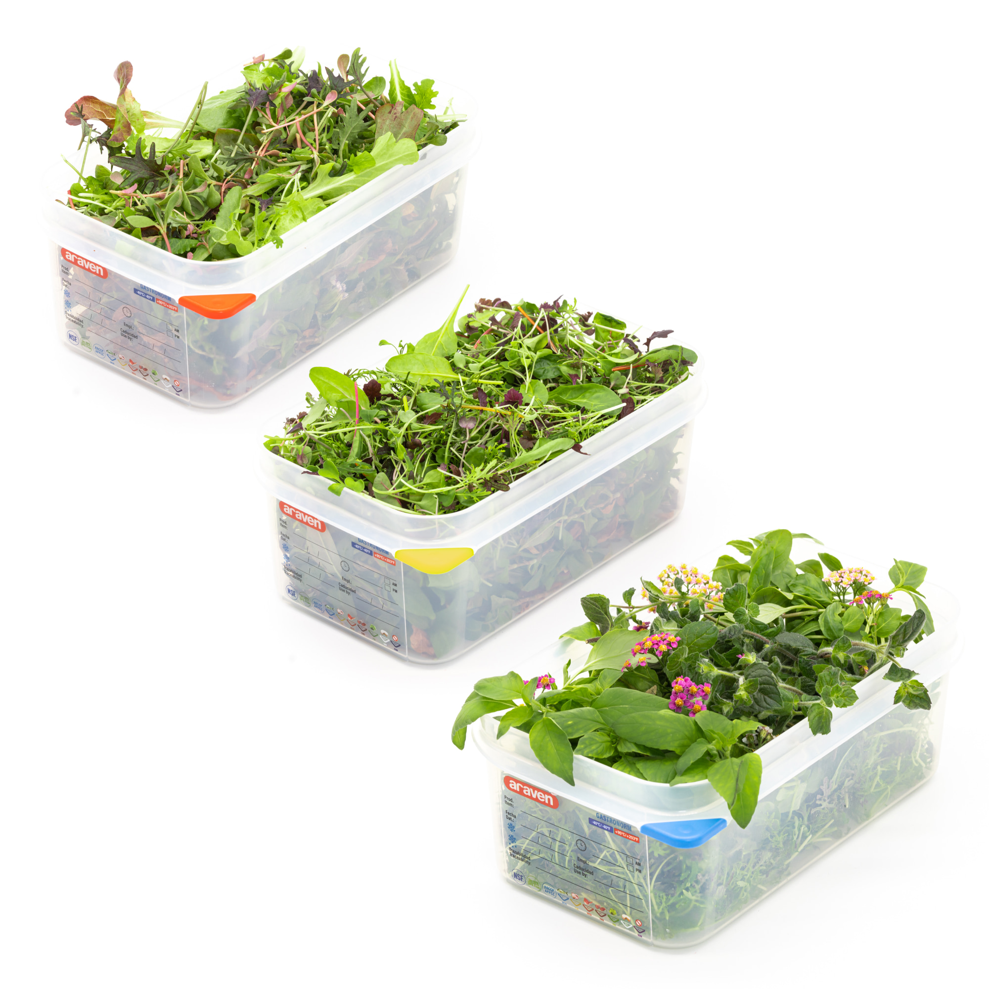 Our baby greens, micro greens, herbs & flowers