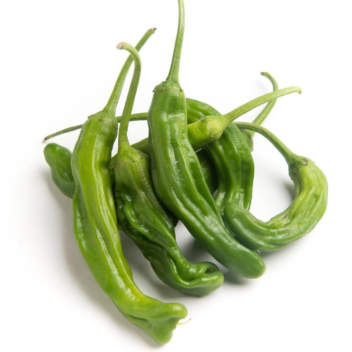 Shishito Peppers from Bodhitree Farm
