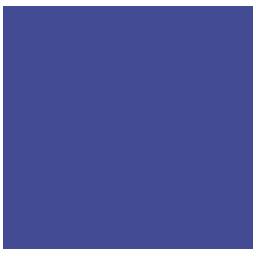 Constellix Logo Check DNS Network