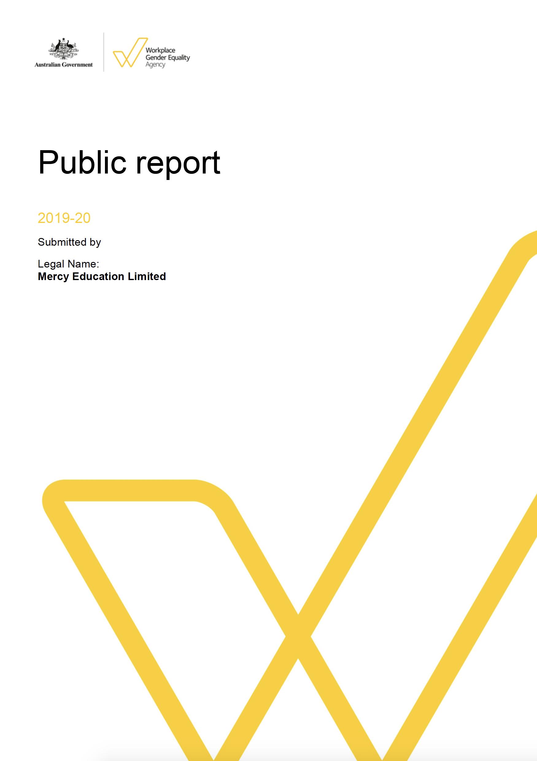 2019-2020 Public Report