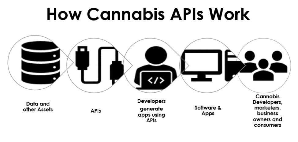 How cannabis APIs work