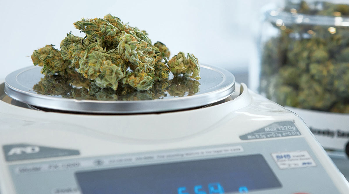 Every Gram Has Its Price: A Look at Pricing Trends in the Cannabis Industry