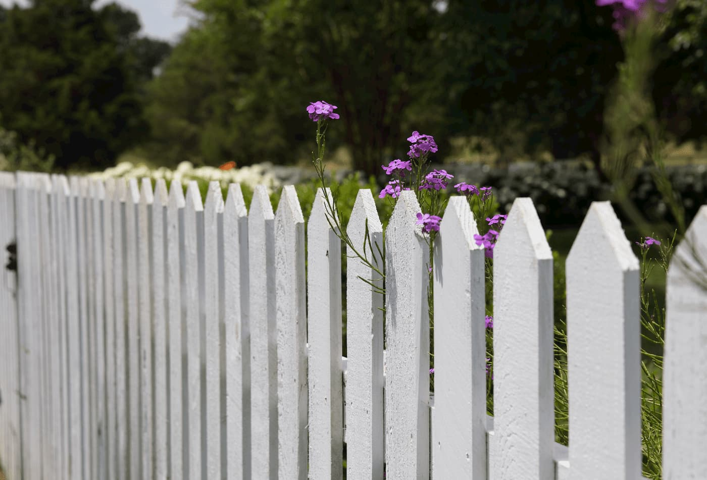 Fencing can be a visual indicator of how you take care of your rental property.