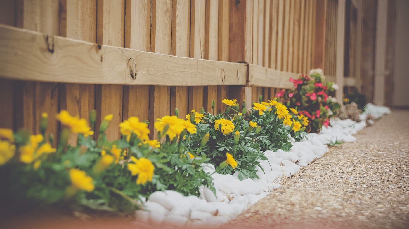 Landscaping helps the curb appeal of your home to potential renters