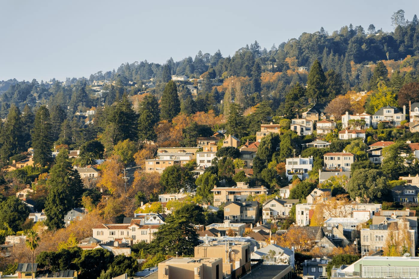 East Bay Area- Haywrd, CA Rental properties