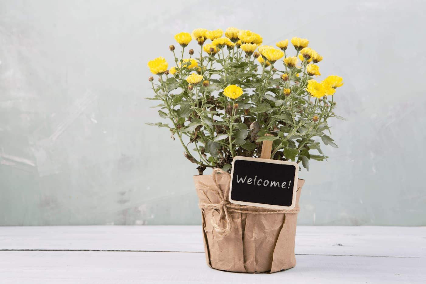 Tenant appreciation welcome back at rental properties