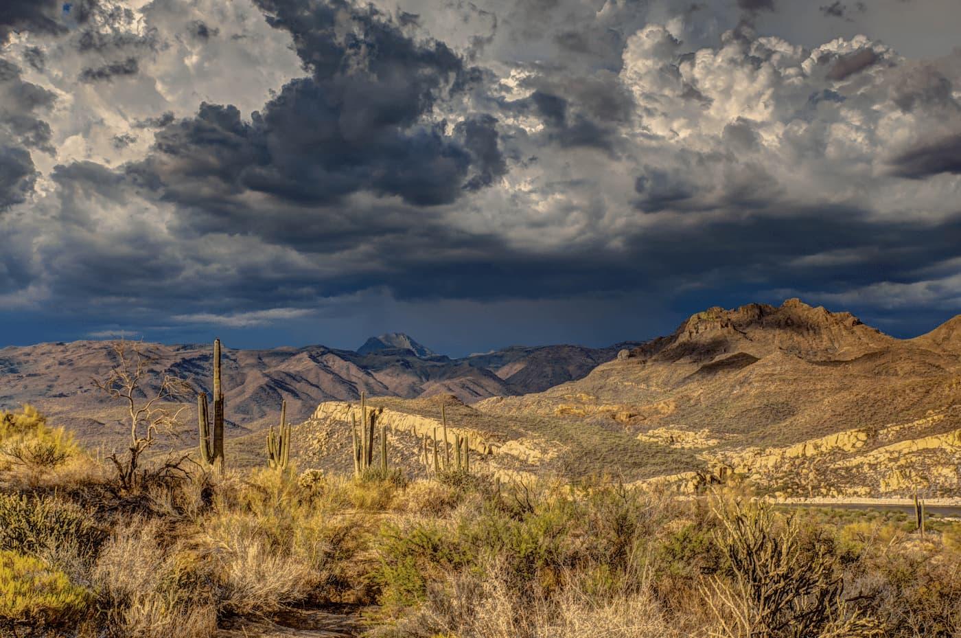 Arizona property management