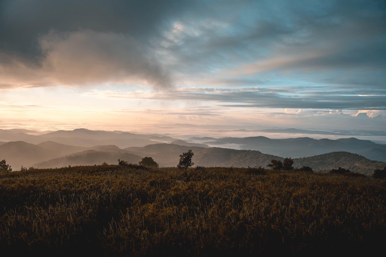 North Carolina property management