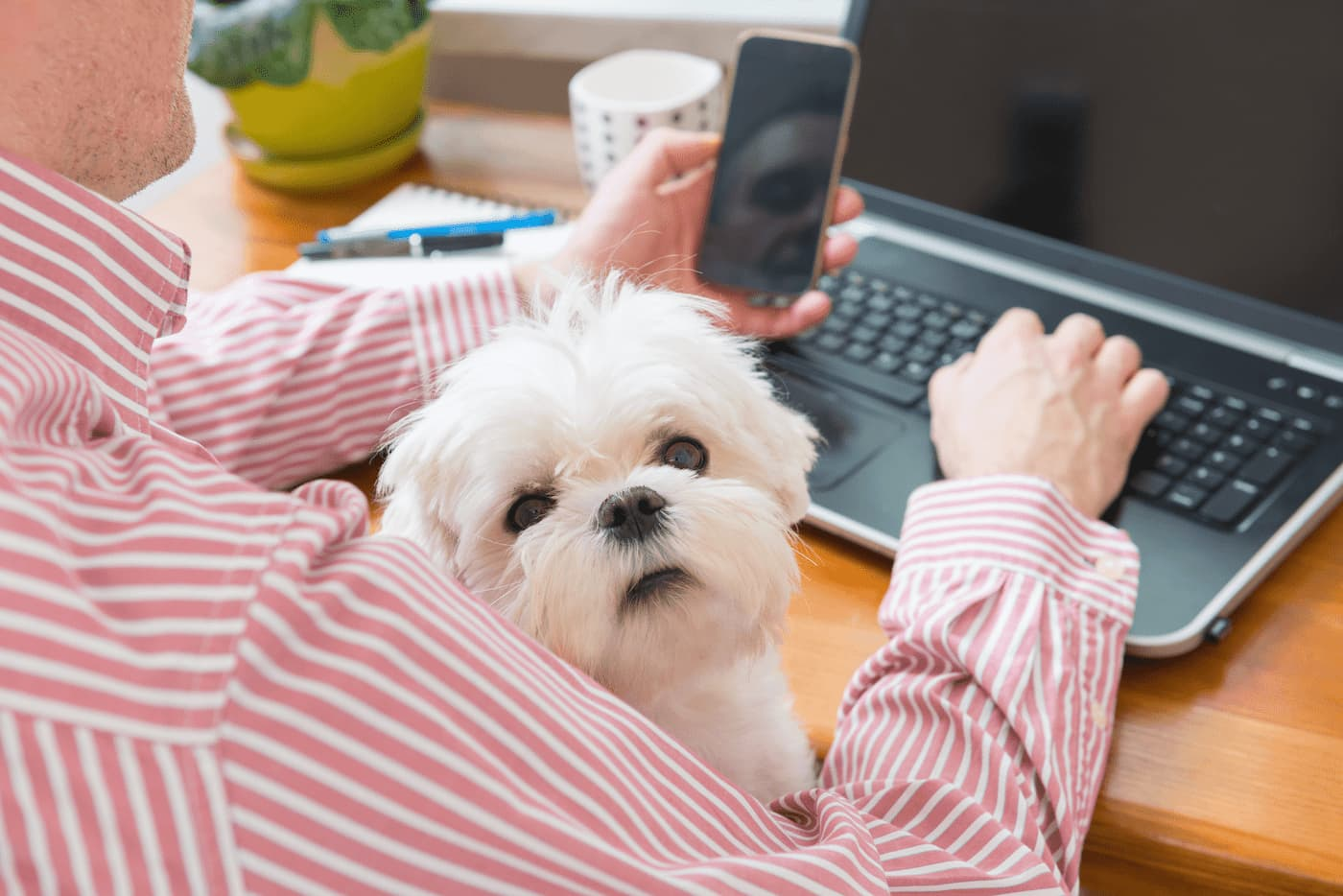 Adapt your rental property to working from home