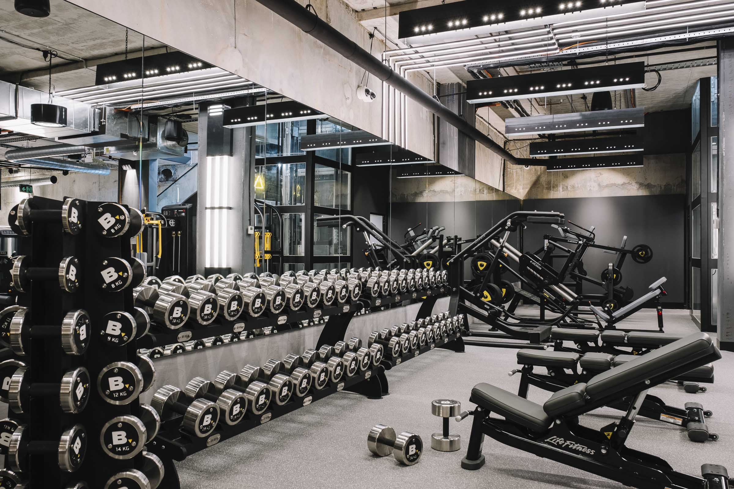 free weights the bunker gym surry hills gallery